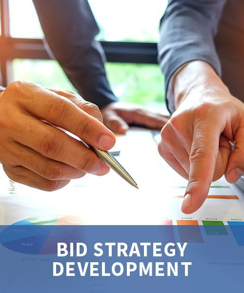Bid Strategy Development